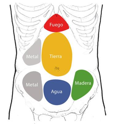 Palpacion abdominal